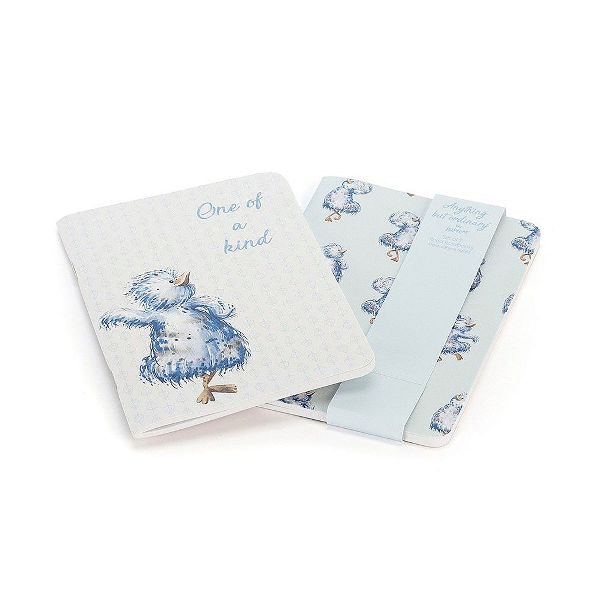 Anything But Ordinary 2 Pack NOTEBOOK Set- Qty 24