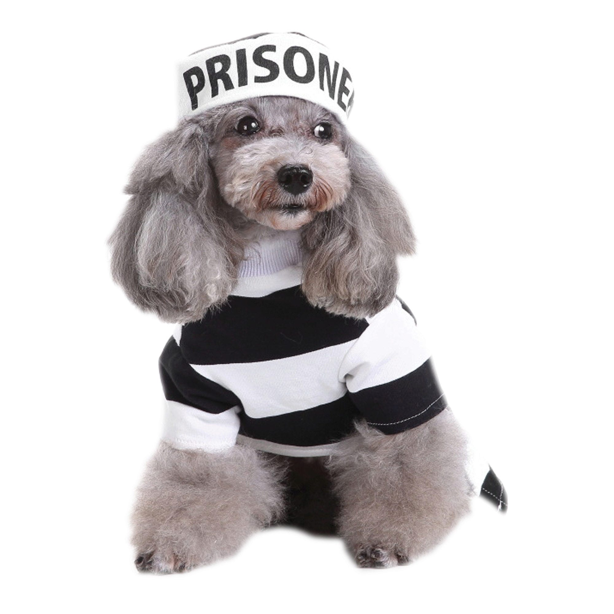 Prisoner Pet Costume - Qty 4