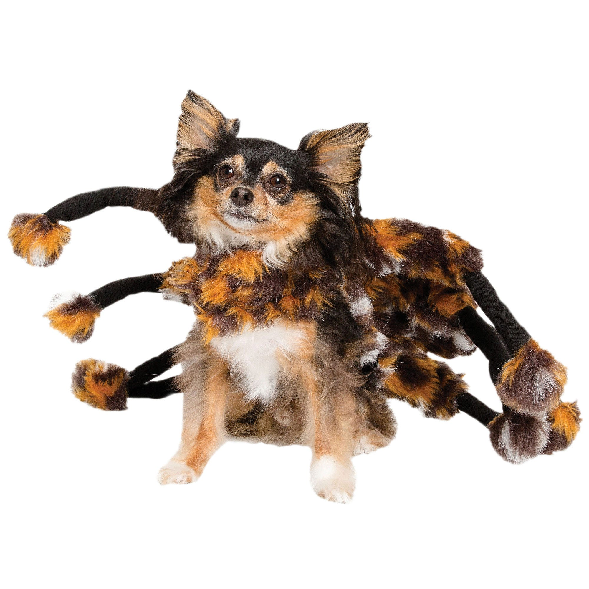 Tarantula Halloween Pet Costume - Qty 4